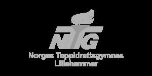 nabsf.no samarbeidspartner ntg