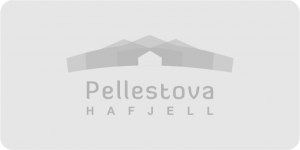 nabsf.no sponsor pellestova background
