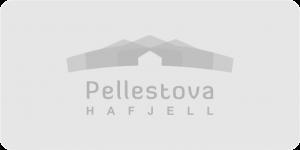 nabsf.no sponsor pellestova background
